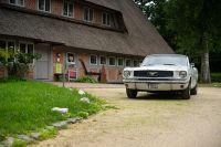 Bild 0 von Kleine Mustang-Tour im Raum Bremen